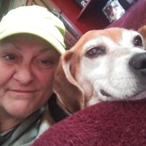 Pet Care Provider Kim A's Profile Picture