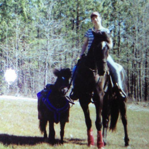 Pet Care Provider Kathy E's Profile Picture