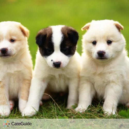 Pet Care Provider Julien Labon's Profile Picture