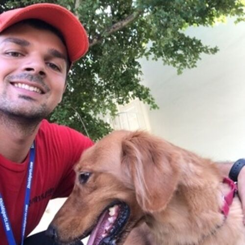 Caring Dog Walker for Hire