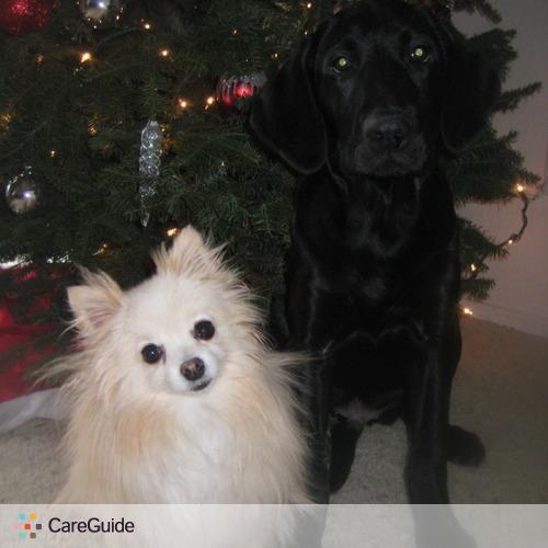 Pet Care Provider Devin Iannetta's Profile Picture