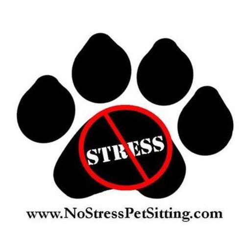 Pet Care Provider Sarah W Gallery Image 1