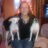 For Hire: Skilled and experienced Pet Sitter in Murfreesboro