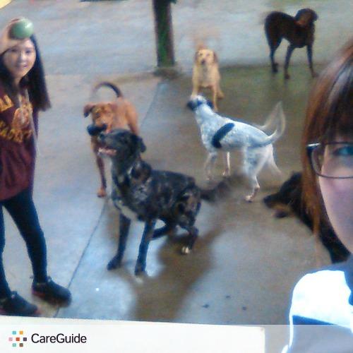 Pet Care Provider Angela lai's Profile Picture