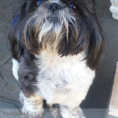 Pet Care Provider Roberta Acetoze's Profile Picture