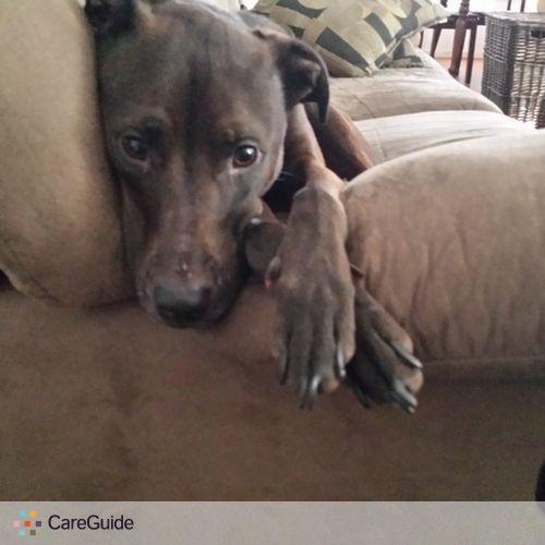 Pet Care Provider Gina H's Profile Picture