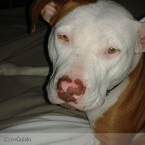 Pet Care Job Nicole Hardy's Profile Picture