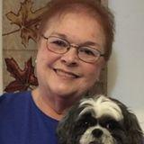 Searching for Davison Pet Service Provider Jobs