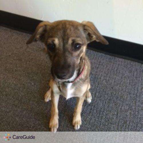 Pet Care Job Danielle Grivalky's Profile Picture