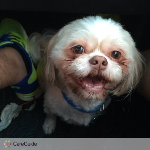 Pet Care Provider Juan Sierra's Profile Picture