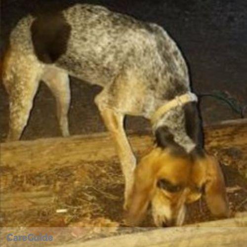 Pet Care Provider Anna P's Profile Picture