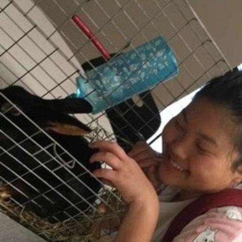 Pet Care Provider Sarah B Gallery Image 2