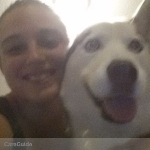 Pet Care Provider Amanda K's Profile Picture