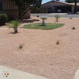 Landscaper in Phoenix
