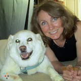 Dog Walker, Pet Sitter in Warrenton
