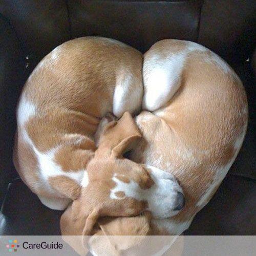 Pet Care Provider MaSona B's Profile Picture