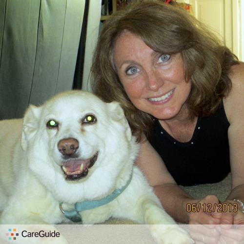 Pet Care Provider Anb P's Profile Picture