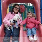 Nanny, Pet Care in Burlington