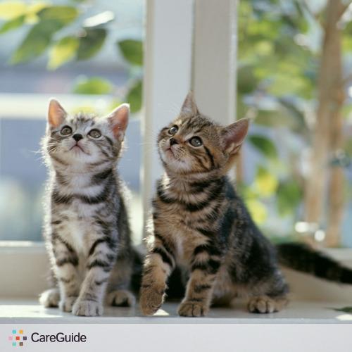 Pet Care Provider Jessica Williams's Profile Picture