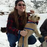 Interviewing For a Dog/Animal Sitter Job in East Texas Area