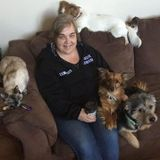 Halifax Pet Carer Available For Work in Nova Scotia