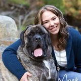Pet owner and previous vet tech available for pet sitting
