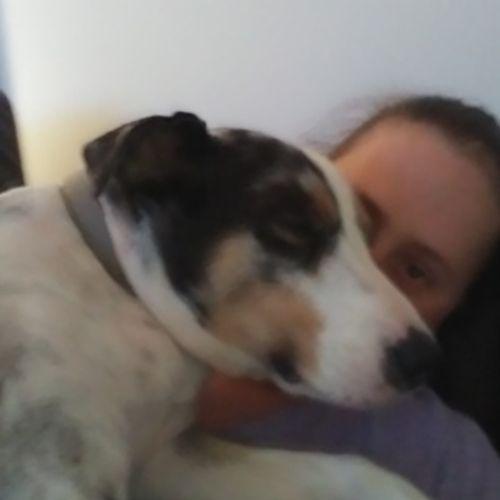 Pet Care Provider Yolanda T's Profile Picture