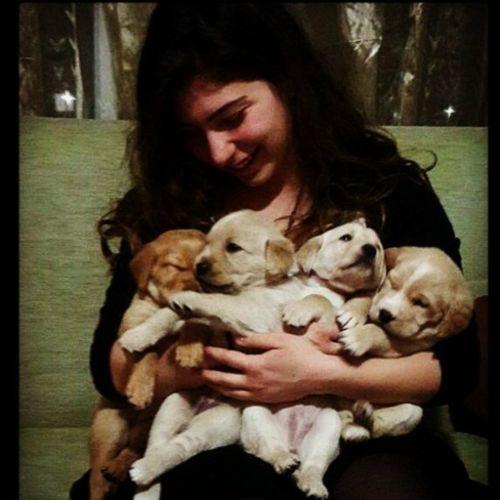 Pet Care Provider Hazal Turan Gallery Image 2