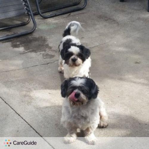 Pet Care Provider Susie A's Profile Picture