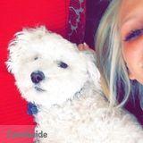 Dog Walker, Pet Sitter in Westlake