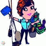 Housekeeper, House Sitter in Fergus