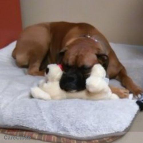 Pet Care Provider Sheila Landrum's Profile Picture