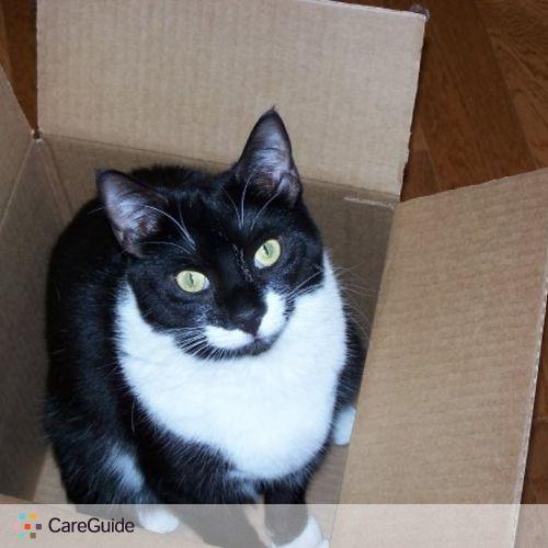 Pet Care Job Sheryl M's Profile Picture