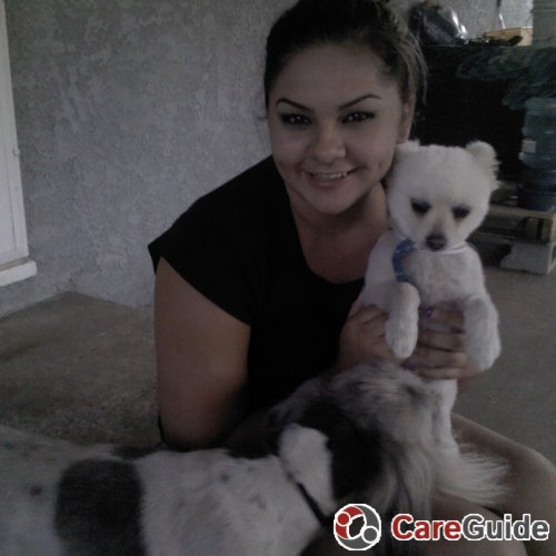 Pet Care Provider Monica Lugo's Profile Picture