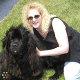 Dog Walker, Pet Sitter in York