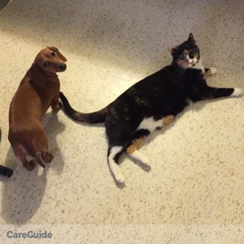 Pet Care Provider Vanessa 's Profile Picture