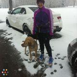 Dog Walker in Calgary