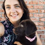 For Hire: Dedicated and Knowledgeable Dogsitter in Sarasota, Florida