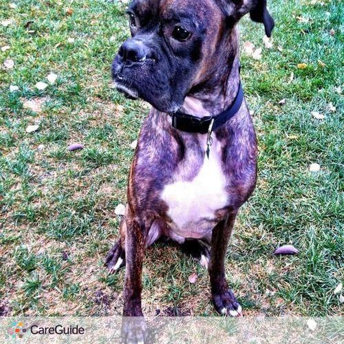 Pet Care Job Heather Hall's Profile Picture