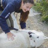 Reliable, compassionate pet care