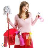 House Cleaning Company, House Sitter in Winter Haven