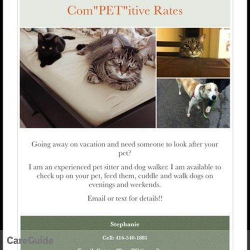 Pet Care Provider Stephanie Clayton's Profile Picture