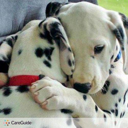 Pet Care Provider Guardian Pet Care Eve Cooper's Profile Picture