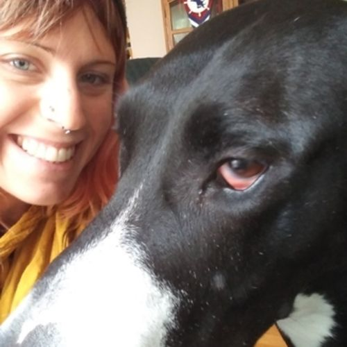 House Sitter Provider Katie C's Profile Picture