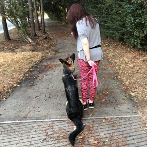 Pet Care Provider Britney Lippke's Profile Picture