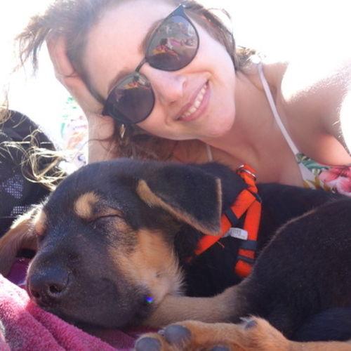 Pet Care Provider Maria O's Profile Picture