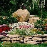 Landscaper in Irving