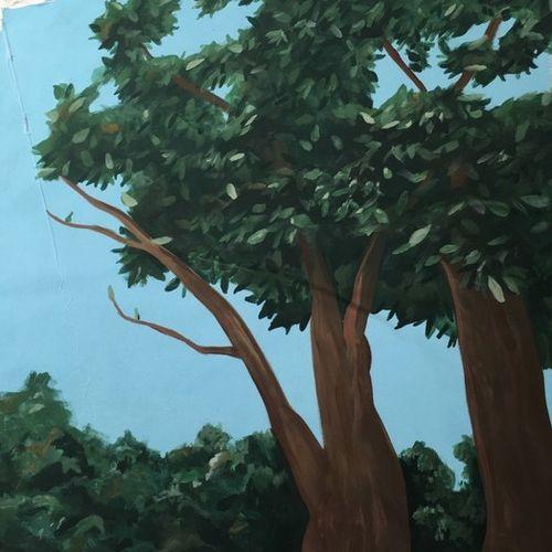Painter Provider Gillian M Gallery Image 2