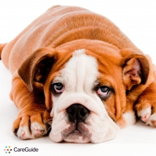 Pet Care Provider Bill Brown's Profile Picture