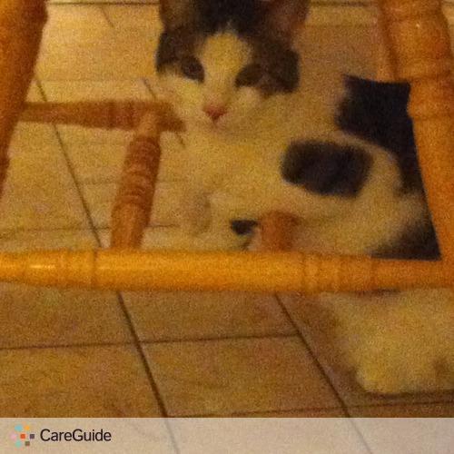 Pet Care Provider Sarah Svensson's Profile Picture